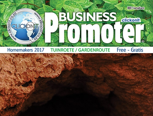 Clickonit Business Promoter
