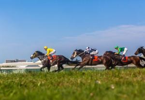 SUN MET HORSE RACE 2019